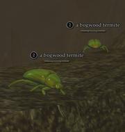 A bogwood termite