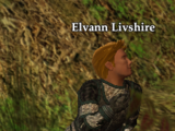 Elvann Livshire