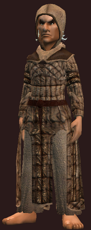 Exquisitely stitched robe (Equipped)