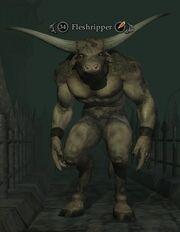 Fleshripper (Monster)