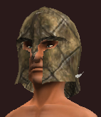 Woodland Protector's Cap (Equipped)