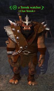 A Terrok watcher