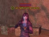 An Adherant prophet
