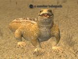 A monitor behemoth