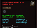Blessed Leather Bracers of the Badland Scion