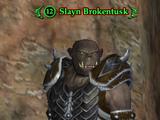 Slayn Brokentusk