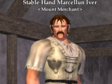 Stable Hand Marcellun Iver