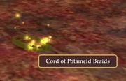 Cord of Potameid Braids