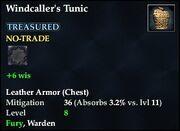 Windcaller's Tunic