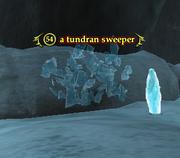 A tundran sweeper