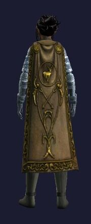 Cloak of the Sisterhood (worn)