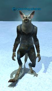 A Snowfang priestess