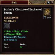 Stalker's Cincture of Enchanted Energy