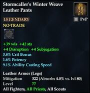 Stormcaller's Winter Weave Leather Pants