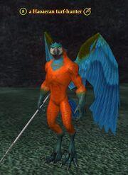 A Haoaeran turf-hunter