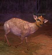 A grove deer