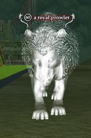A royal prowler