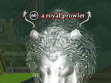 A royal prowler
