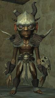 Rhool-mercenary