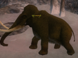 Tantor XII