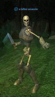 A fallen assassin