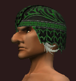 Coif of the Primalist Nature (Equipped)