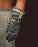 Naturewalker's Leather Gloves of the Forestspeaker (Equipped)