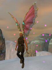 Erollisi day wings