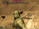 A Bloodskull spotter