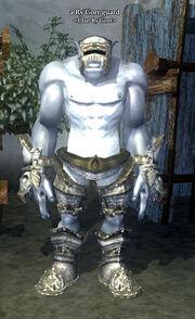 A Ry'Gorr guard