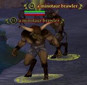 A minotaur brawler