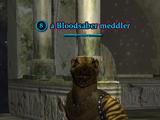 A Bloodsaber meddler