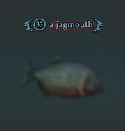 A jagmouth