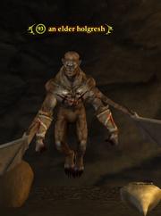 An elder holgresh