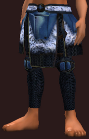 Frostwind Champion's Chausses (Equipped)