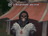 A Briarstone ancient