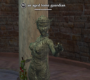 An aged tome guardian
