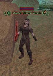 Master Slayer Varash