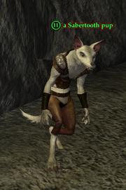 A Sabertooth pup