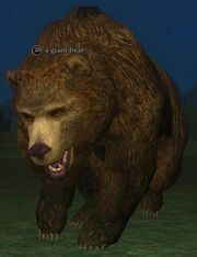 A giant bear