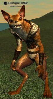 A Darkpaw raider