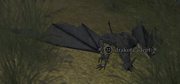 A drakota adept