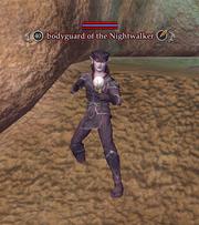 Bodyguard of the Nightwalker
