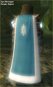 Cloak of Valor (worn)
