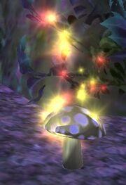 Ethernere mushroom visible