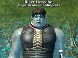 Bleer Heveefut
