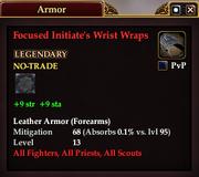 Focused Initiate's Wrist Wraps