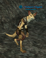 A Darkpaw brigand