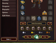 Character Window Auto-Inventory Detail