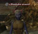 A Bloodsaber assassin